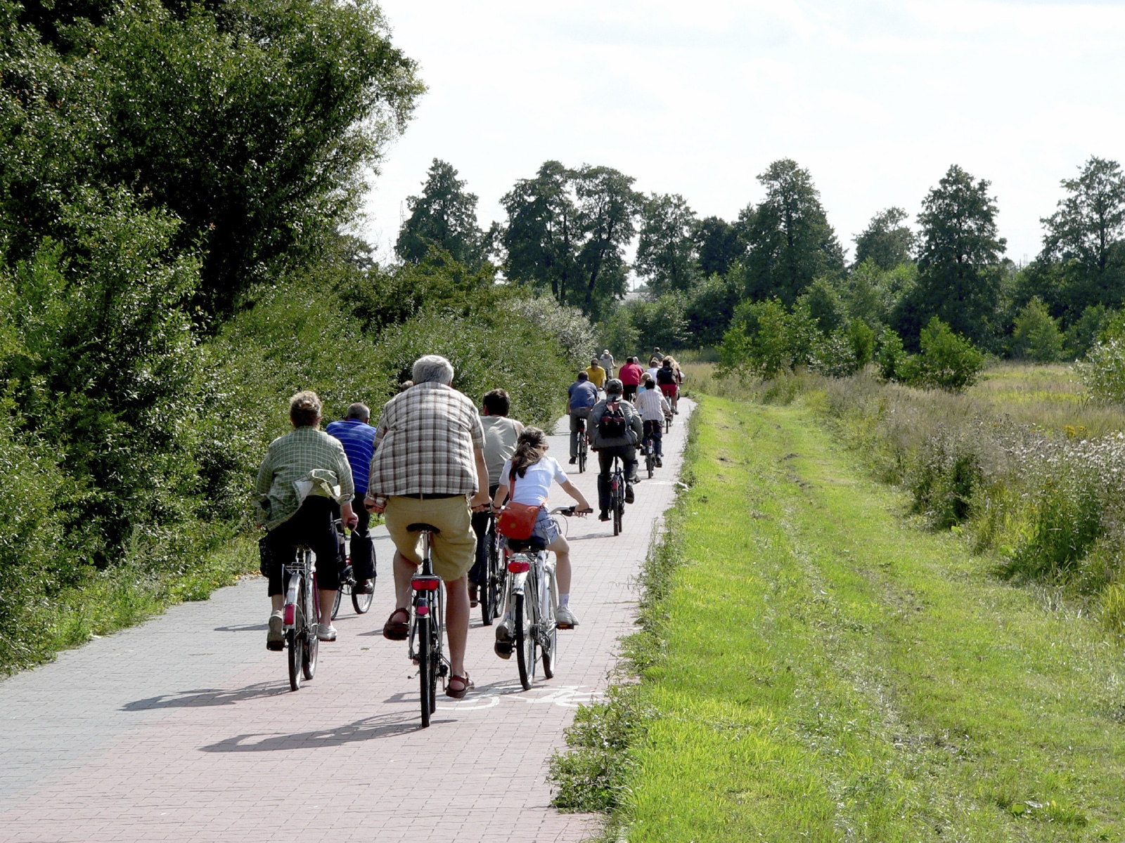 Group of adults and children riding along a cycle path